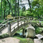 Ładny ,a także ładny ogród to zasługa wielu godzin spędzonych  w jego zaciszu w toku pielegnacji.